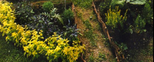 giardino-edibile_640x260