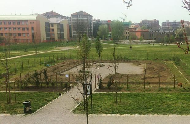 Terreno preparato per terzo orto